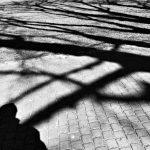 Corona Shadows            Michiel Goudswaard